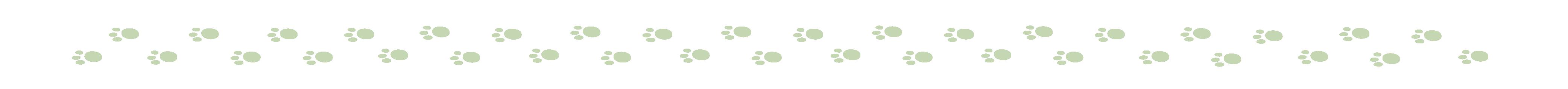 0078-2019-002 illustratie voetstapjes